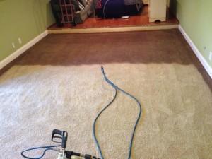 Carpet dye