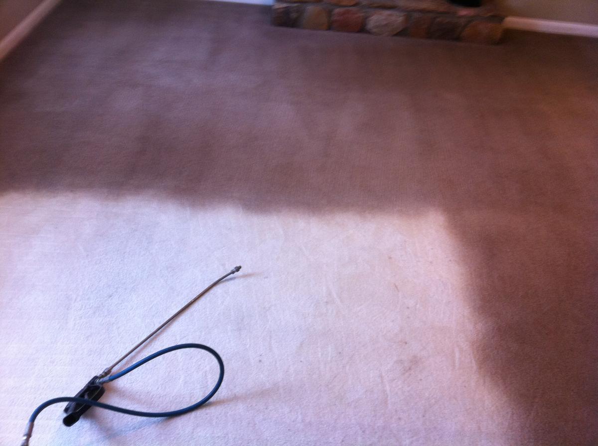 Dyeing Carpet MenzilperdeNet